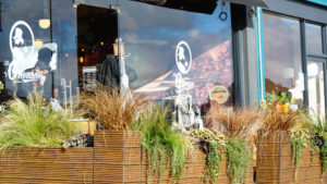 How to choose plants for a high street shop front