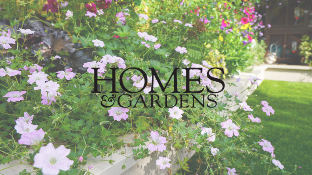 Homes and gardens Decking Planting Ideas Article