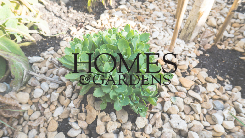 homes and gardens Green Roofs Article